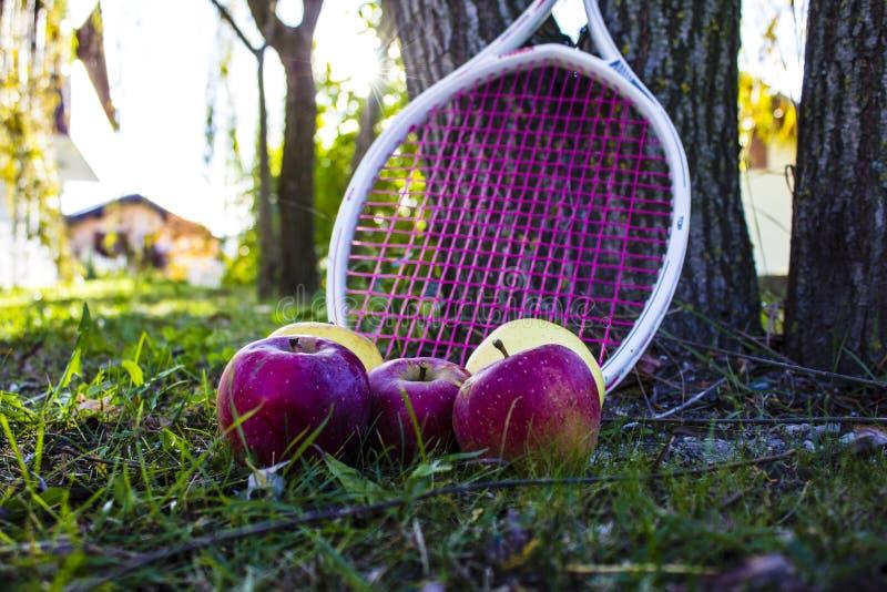 Äpfel und Trauben stockbilder