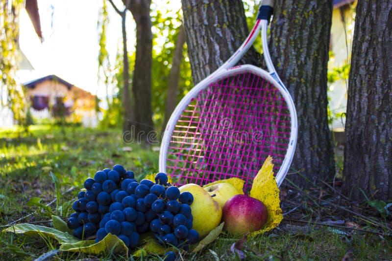 Äpfel und Trauben stockbild