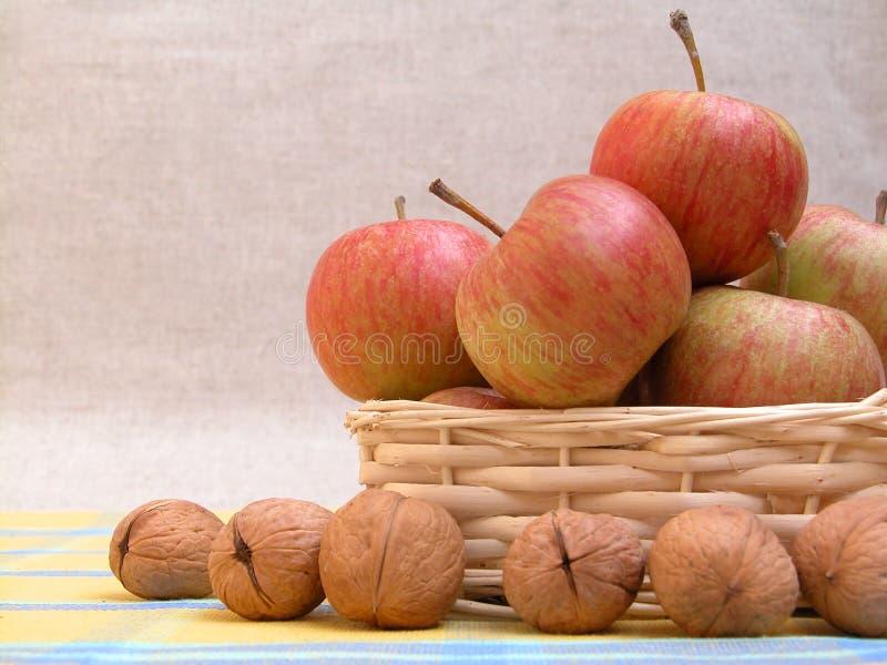 Äpfel und Walnüsse stockbild
