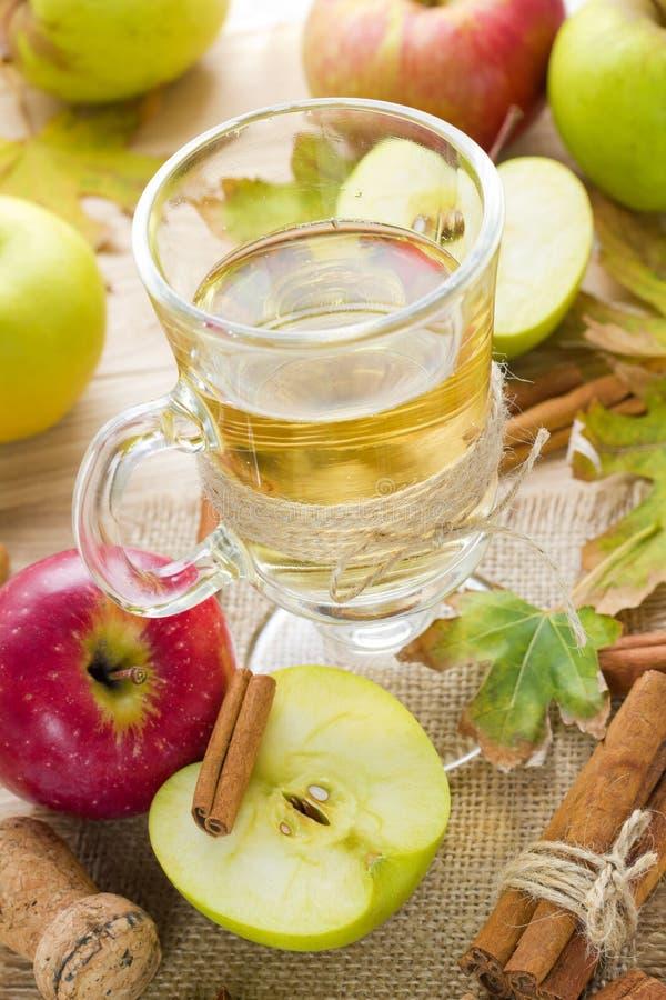 Äppelcider royaltyfri fotografi