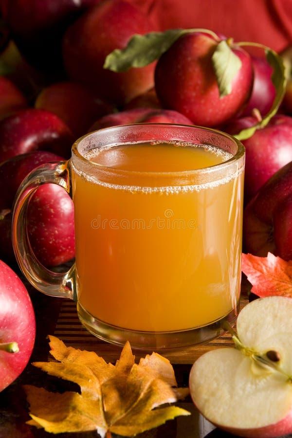 äppelcider royaltyfri bild
