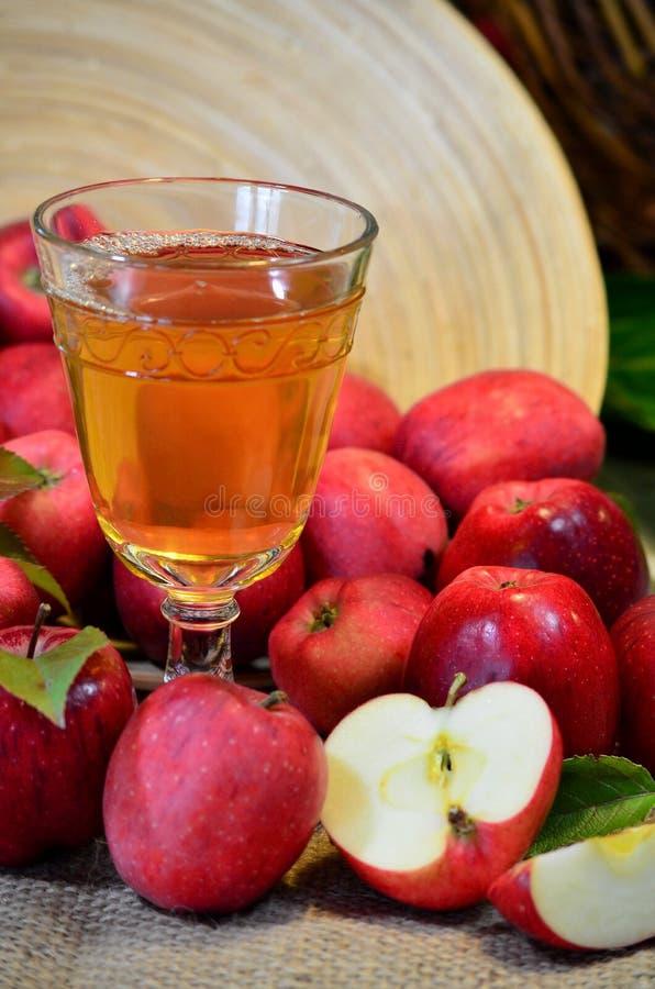 Äppelcider kuper royaltyfri foto