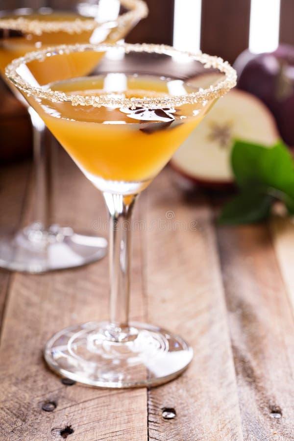 Äppelcider martini med stjärnaanis royaltyfri bild