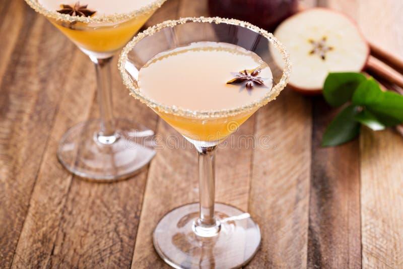 Äppelcider martini med stjärnaanis royaltyfri fotografi
