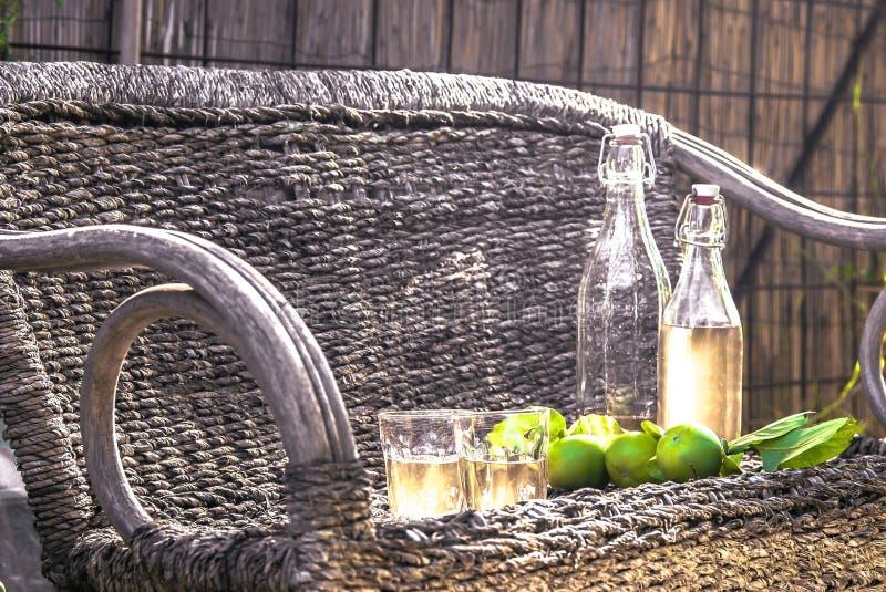 Äppelcider på en vide- stol royaltyfri foto