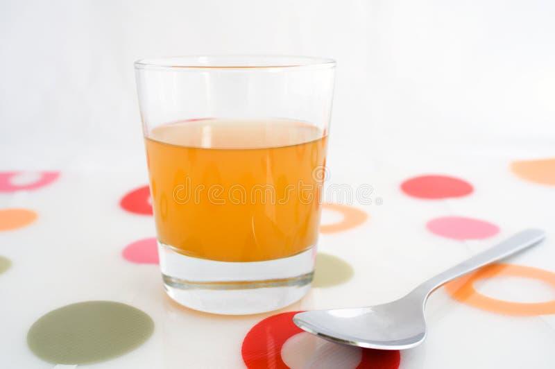 äppelciderexponeringsglasvinäger royaltyfria bilder