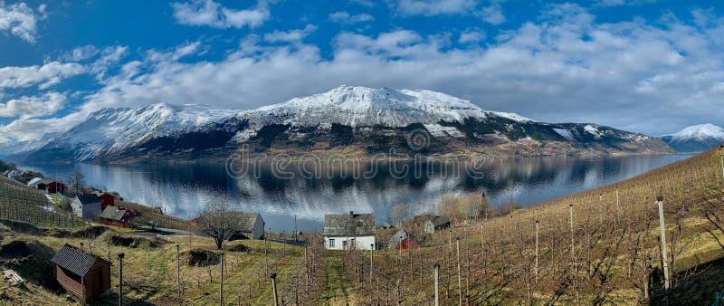 Äppelciderodling i Sorfjorden, Norge royaltyfri bild