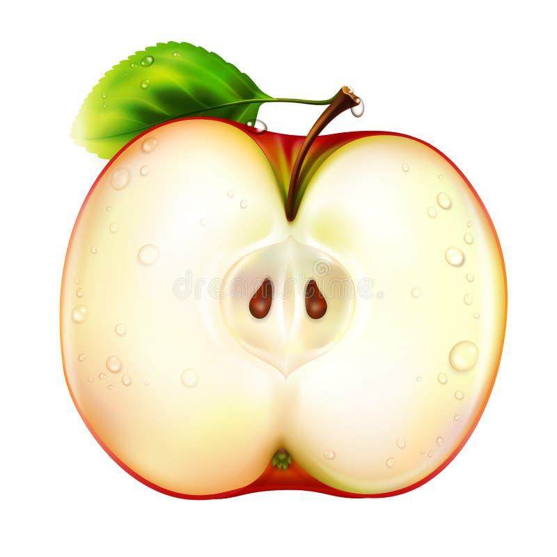 äpple stock illustrationer