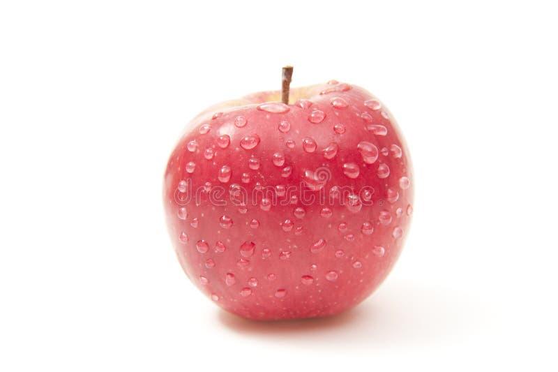 äpple royaltyfria bilder