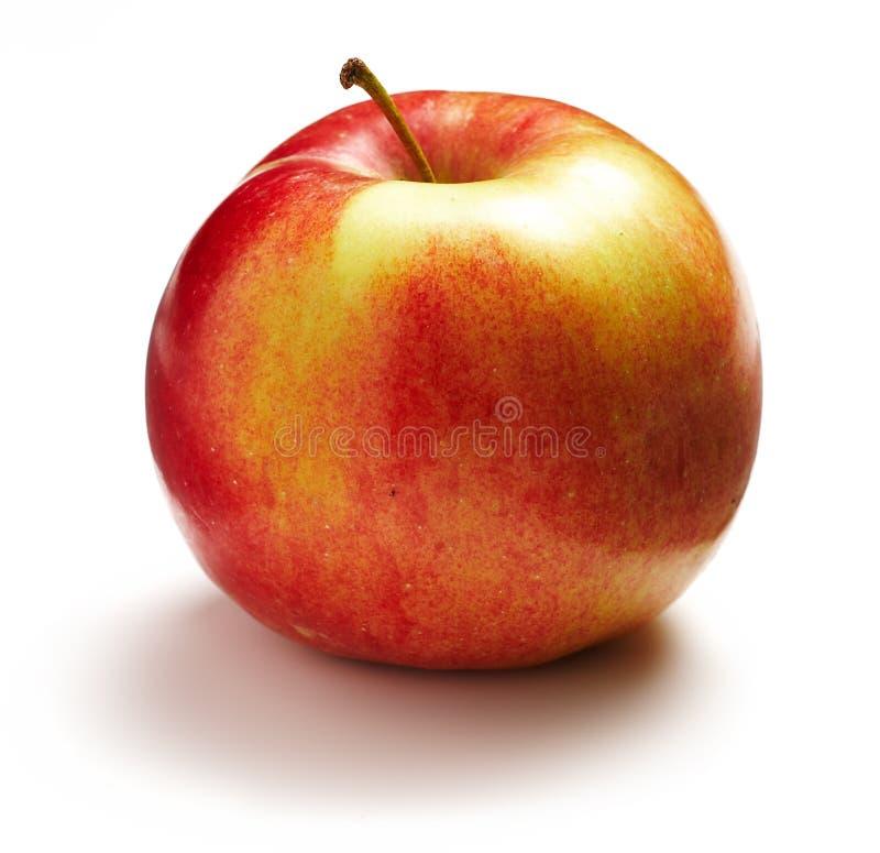 äpple ett royaltyfri fotografi