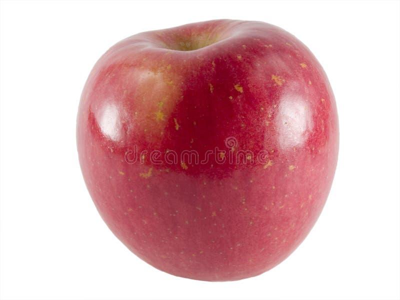 äpple fuji royaltyfri foto