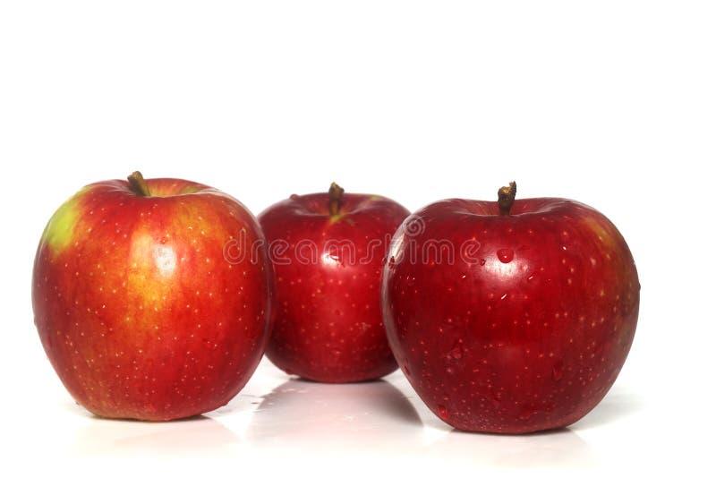 äpple isolerade macintosh royaltyfria foton
