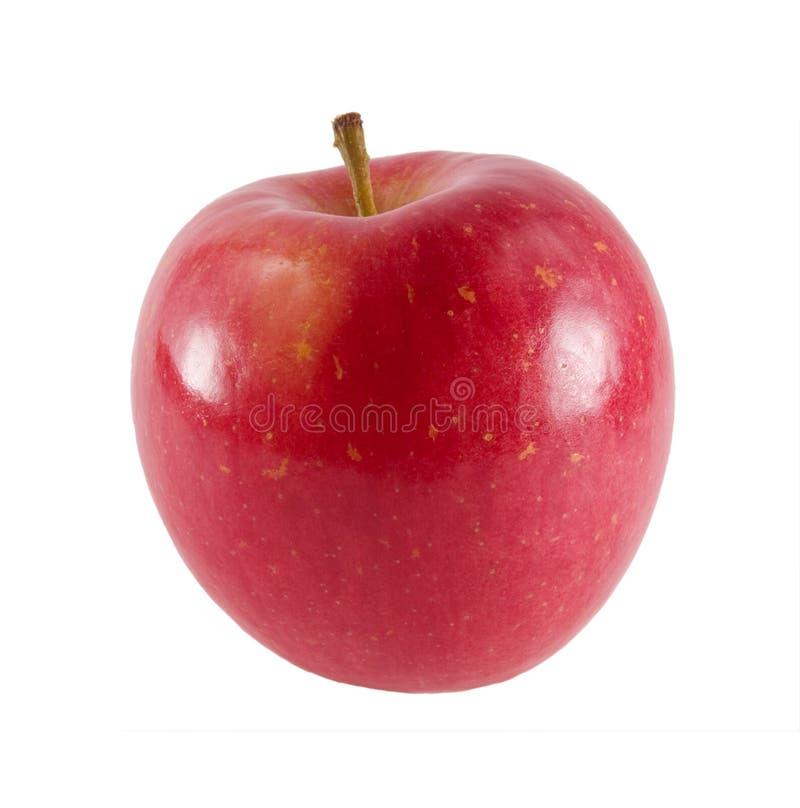 äpple nya fuji arkivbild