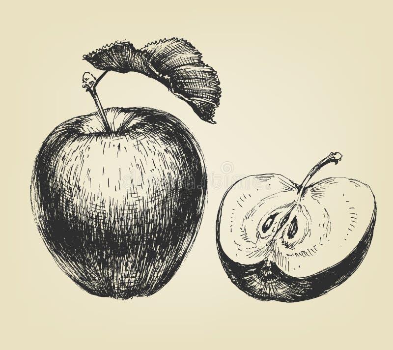 äpple tecknad hand stock illustrationer