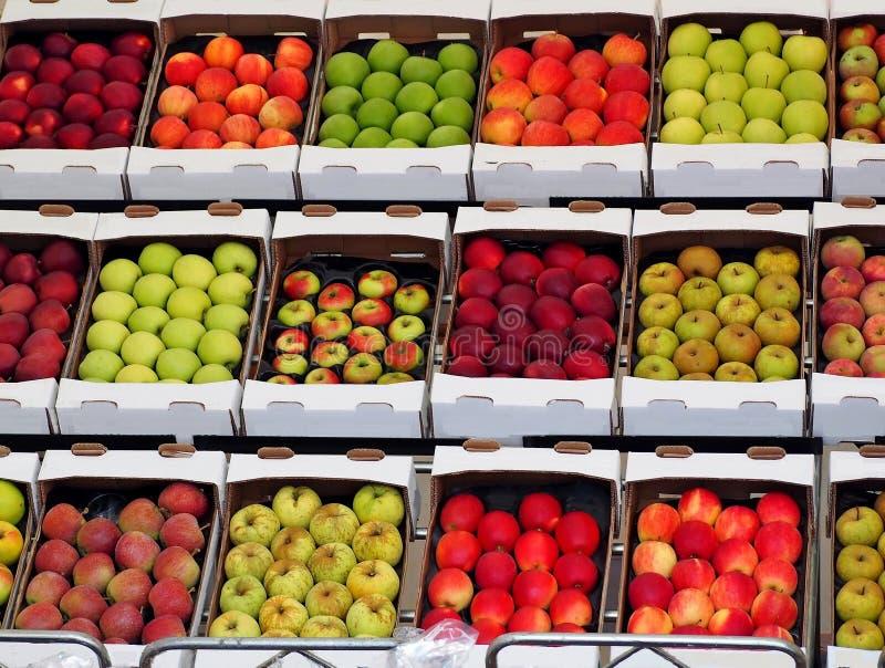 Äppleaskar delade vid kvalitet, variation och färg på en hylla Mångfärgad fruktmatbakgrund arkivbild