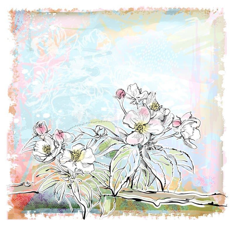äppleblomtree stock illustrationer