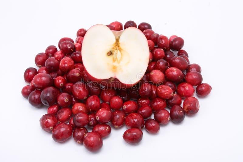 äpplecranberries n royaltyfria bilder