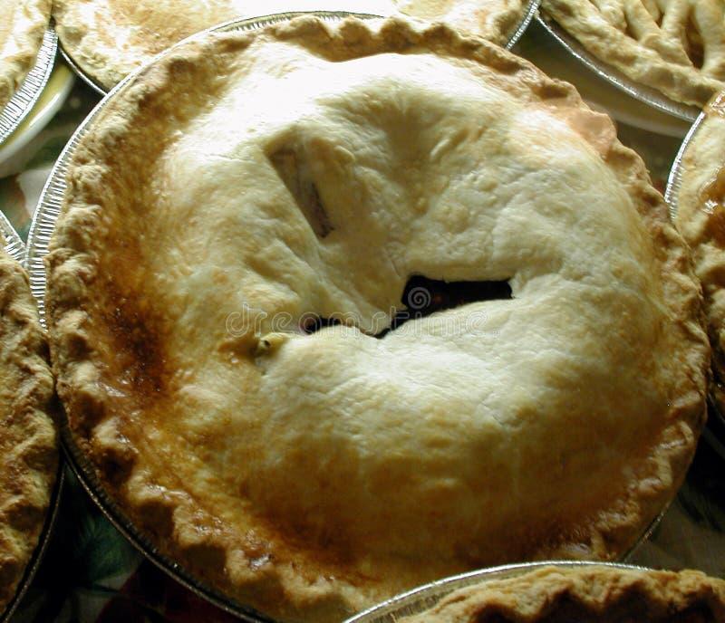 Download äppleferiepies arkivfoto. Bild av pies, vinter, säsongsbetonat - 44468