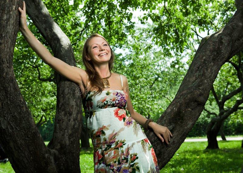 äppleflickafruktträdgård fotografering för bildbyråer