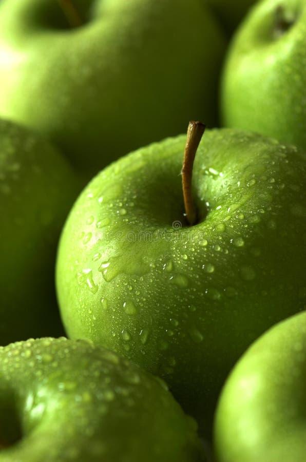 äpplegreen arkivbild