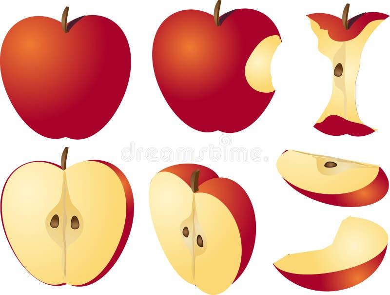 äppleillustration vektor illustrationer