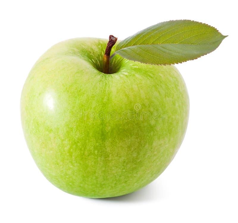 Download äppleleaf fotografering för bildbyråer. Bild av rent - 19784715