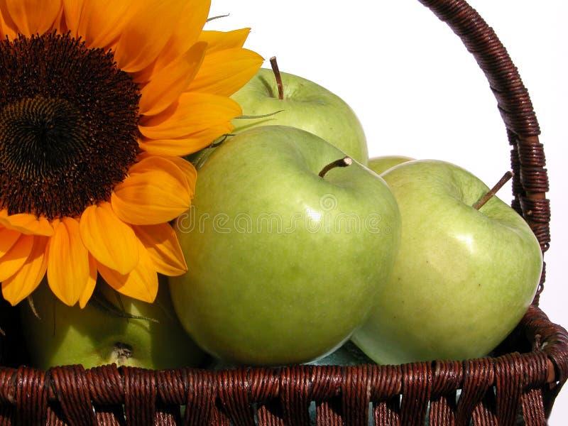 Download äpplen arkivfoto. Bild av frukt, vitamin, läckert, nytt - 238394