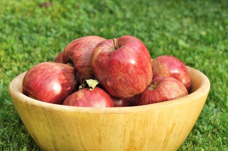 äpplen bowlar full red royaltyfria bilder