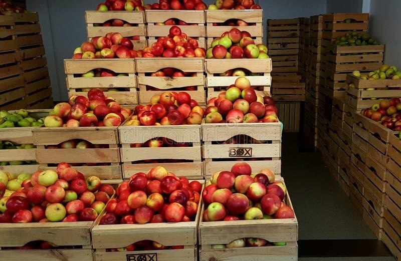 Äpplen i träaskar arkivfoton