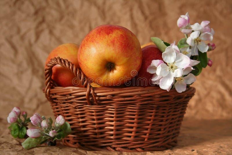 Äpplen och blommor arkivbild