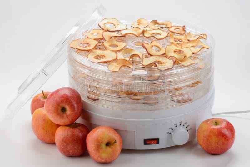 Äpplen och en elektronisk tork royaltyfri bild