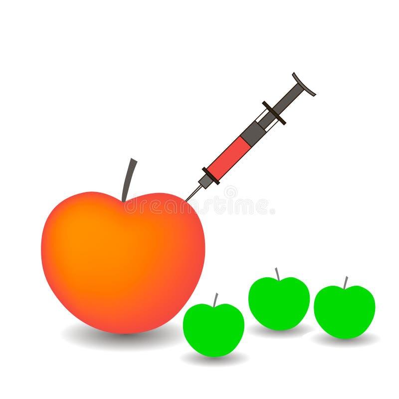 Äpplen och injektionsspruta vektor illustrationer