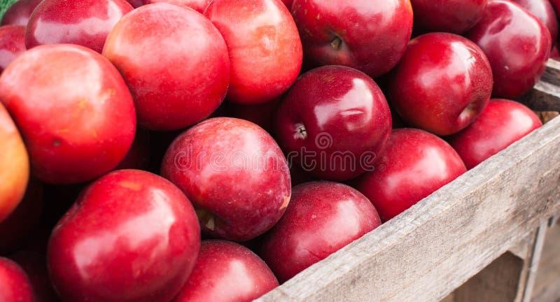Äpplen på bondemarknaden royaltyfri bild