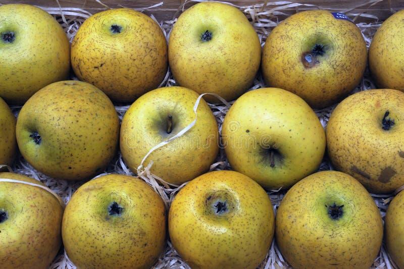 Äpplen på grönsakshandlaren royaltyfria bilder