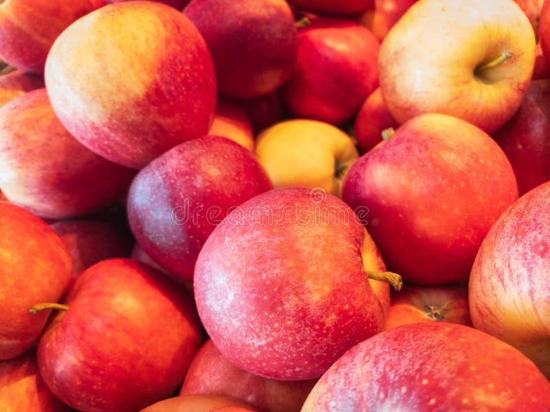 äpplen samlar ihop red royaltyfri foto
