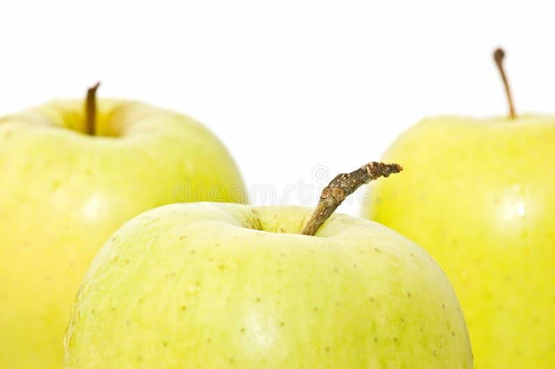 äpplen stänger sig upp yellow royaltyfri bild