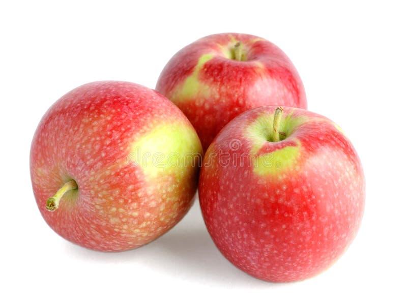 äpplestapel arkivbild
