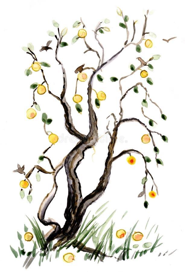äpplet branches treen vektor illustrationer