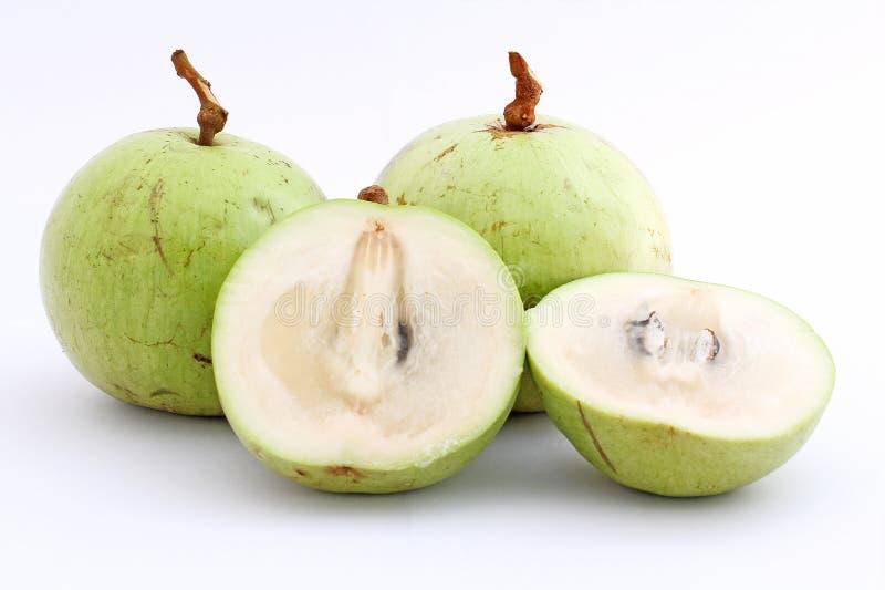 äpplet som asia fann långt frukt mig kinden för att veta mestadels stjärnan arkivfoto