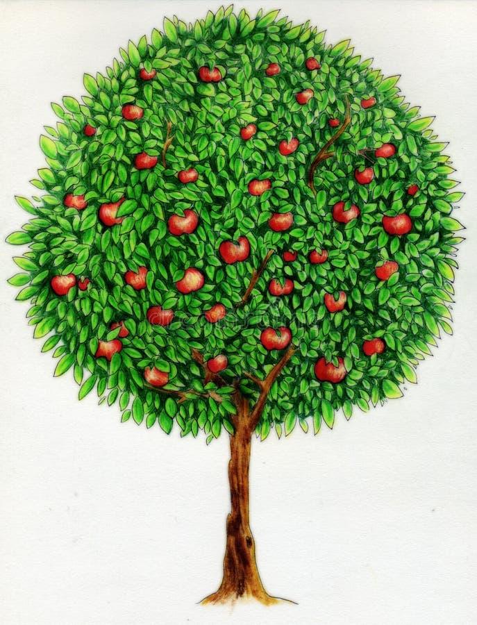 äppleteckningstree royaltyfri illustrationer