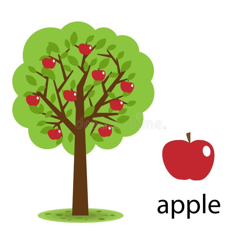 äppletree stock illustrationer