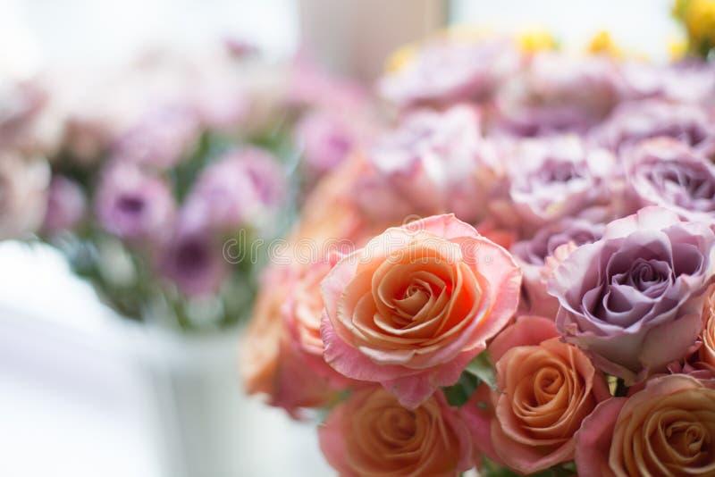 Är piggy och violetta för minnesgränd rosor för fantastisk korallmiss i en vas Älskvärda blommor är på ett fönster arkivfoton