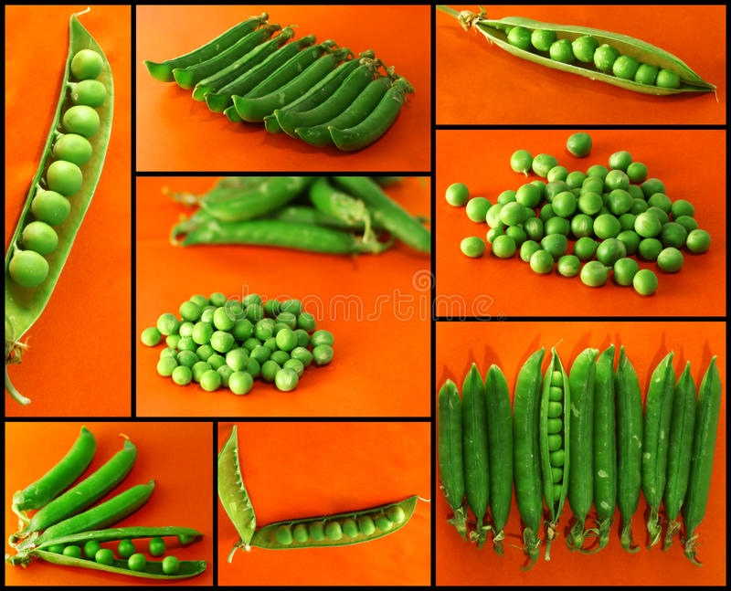ärtor för closeupgreenmix kärnar ur grönsaksikt royaltyfri foto