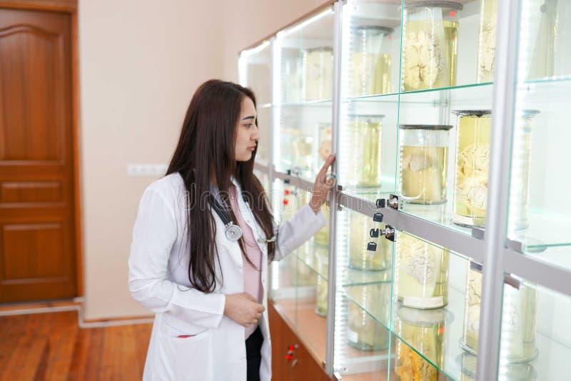 ?rztin im Anatomielabor E Konzept des Gesundheitswesens lizenzfreies stockfoto
