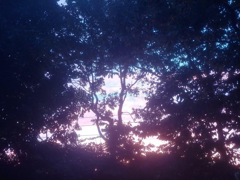 Ästhetisch farbenfrohe Baumwolle Candy Sky lizenzfreies stockfoto