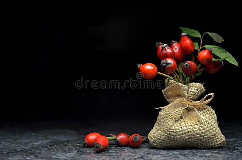 äta tema för tea för sund höftillustration rose royaltyfri bild