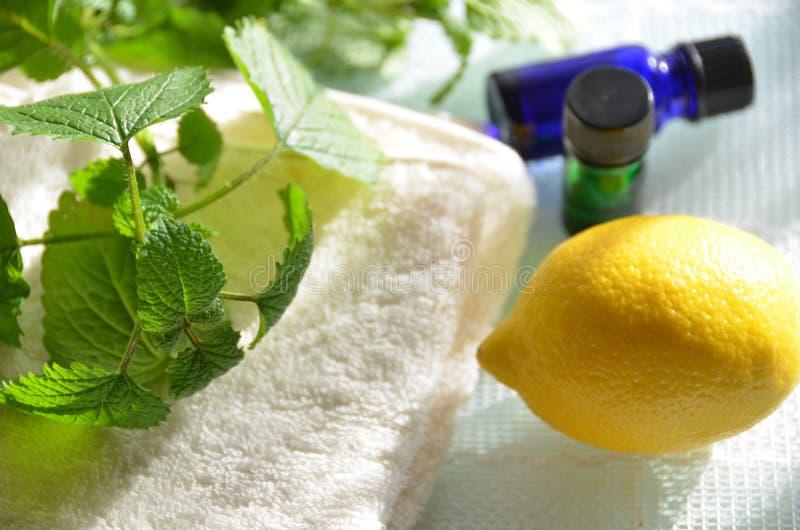 Ätherische Öle mit Zitrone lizenzfreies stockbild