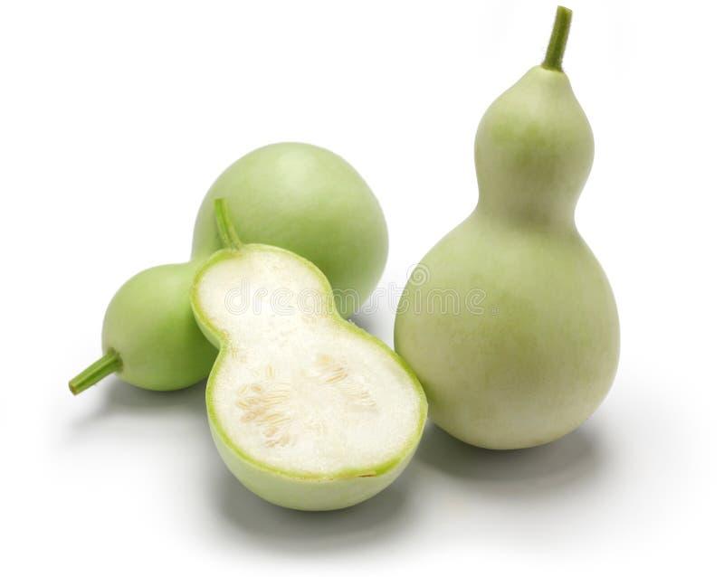 Ätlig grön kalebass royaltyfri foto