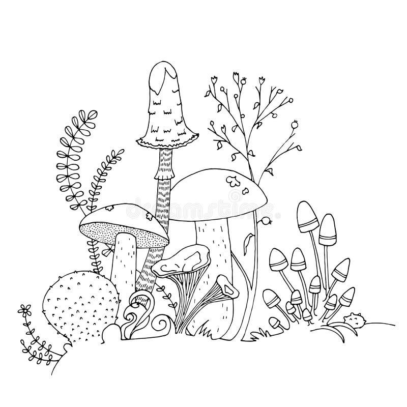 Ätliga olika champinjoner, hand dragen illustration Sida för färgläggningbok vektor illustrationer