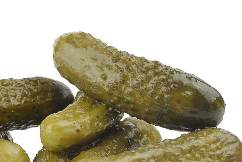 Ättiksgurka med vit bakgrund för vinegaron royaltyfri bild